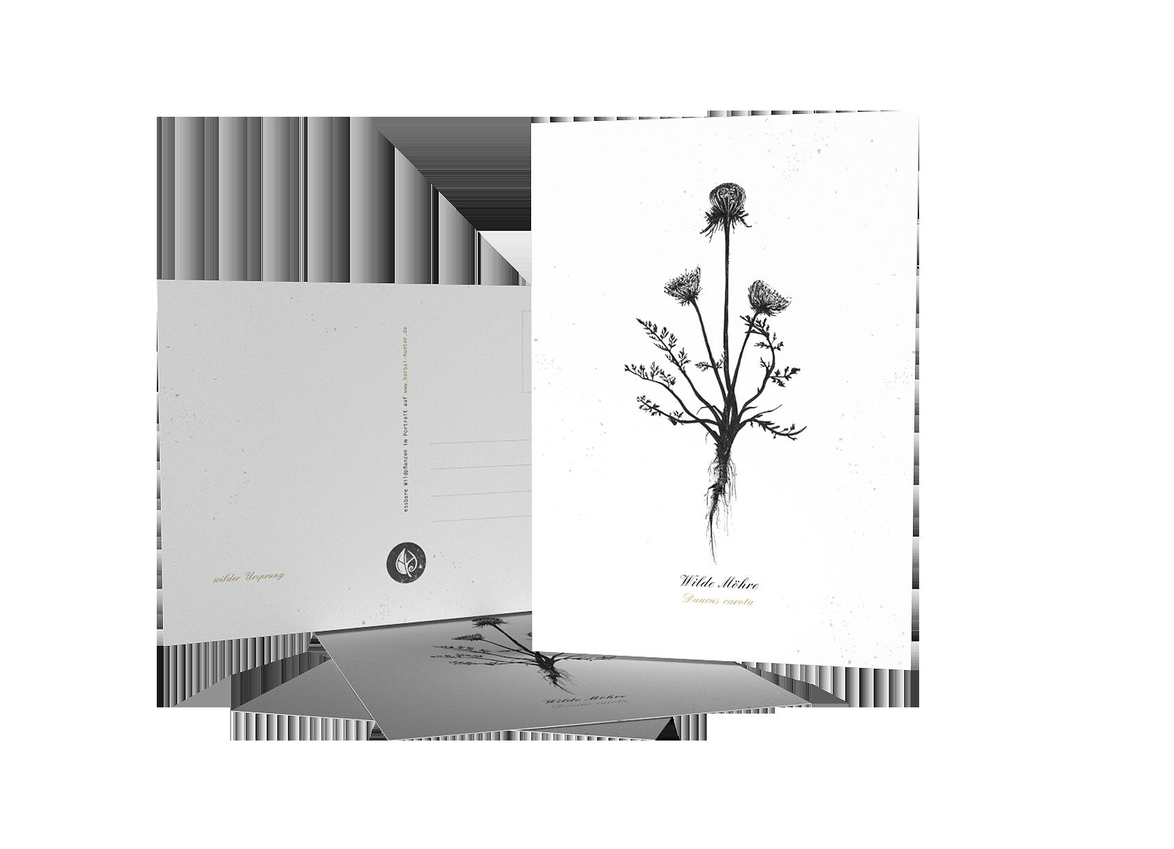 Herbal Hunter Kräuterpostkarten